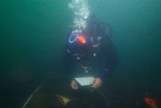 Bulgaria: Kiten Bay Underwater