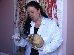 Dr. Linda Lynch